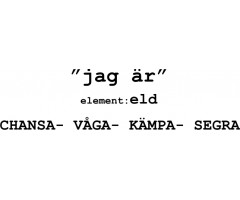 Astrologi Element Karaktärsdrag Väduren