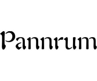 Rumstext Pannrum